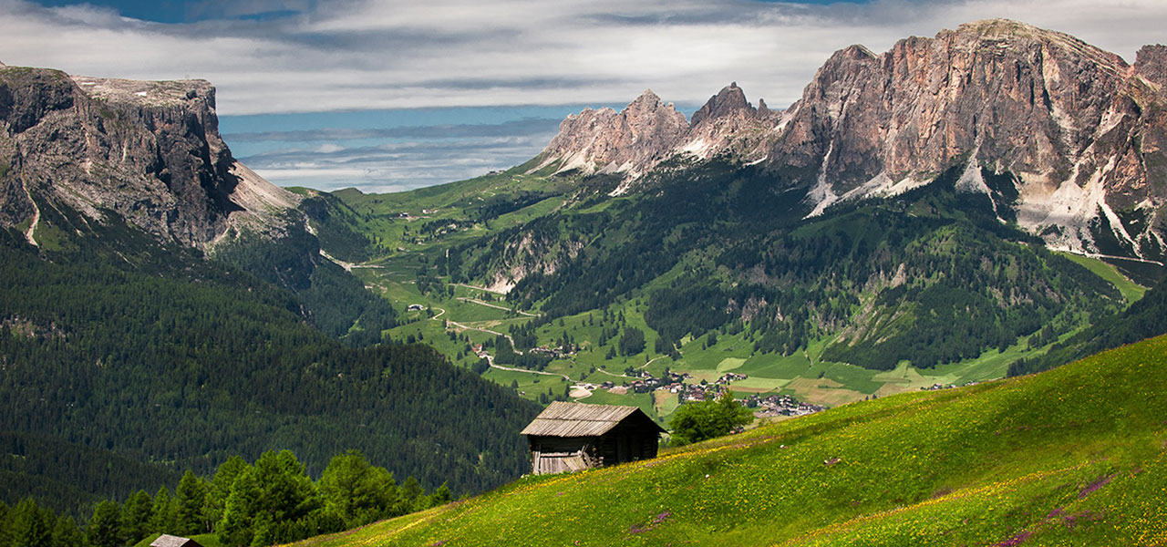 Summer panorama with woods, huts and Dolomites