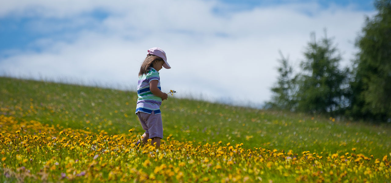 Girl picking flowers on a meadow